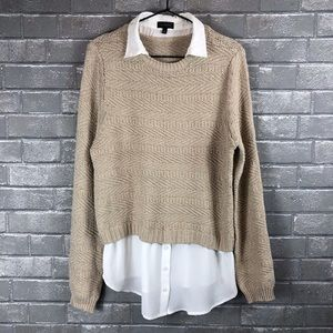 The Limited Sweater Blouse